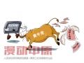 黄牛破解12306网站 — 果园工社时政漫画